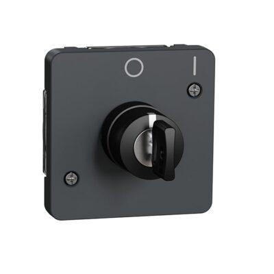 Interrupteur à clé 2 positions IP55 IK07 - gris anthracite - MUR35062