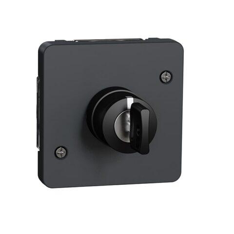Interrupteur à clé 3 positions IP55 IK07 - Gris anthracite - MUR35061