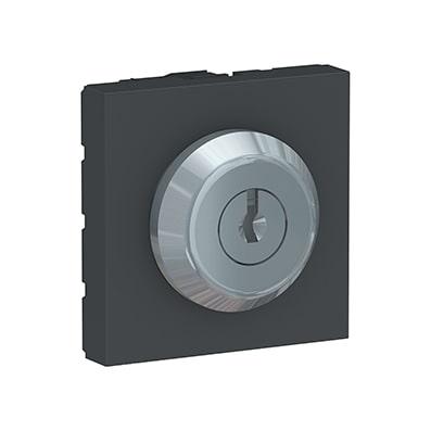 Schneider Interrupteur à clé Anthracite Unica - Poussoir - 10A -NU373154