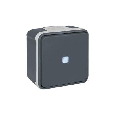 Interrupteur Va-et-vient lumineux - 1 poste - 10AX - 250V - 60811