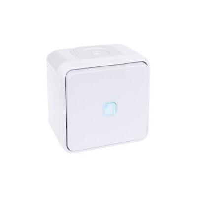 Bouton poussoir lumineux Oxxo - 1 poste - 10AX - 250V - Blanc -60814