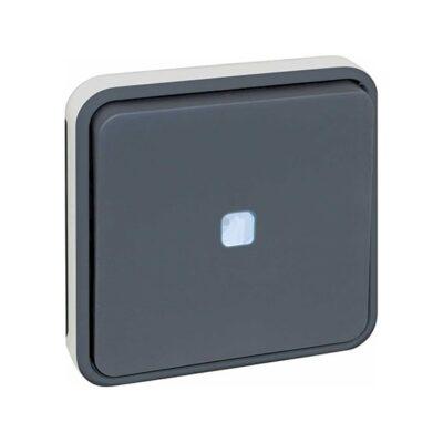 Boutton poussoir lumineux GRIS IP55 - 60824